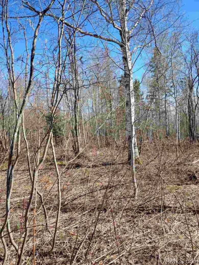 TBD Us41, Hancock, MI by Northern Michigan Land Brokers - H $48,000
