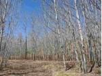 TBD Off Finntown RD, Vulcan, MI by American Forest Management $280,000