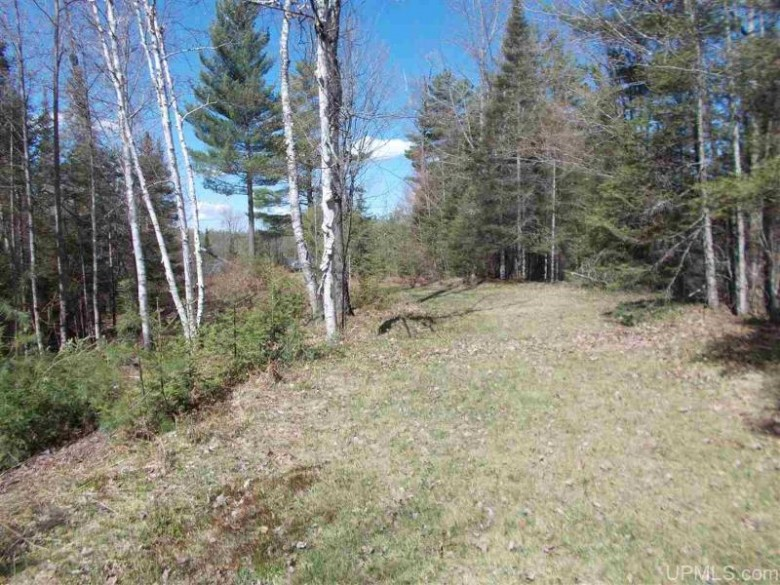 3688 Scoter Rd, Republic, MI by Northern Michigan Land Brokers $159,000