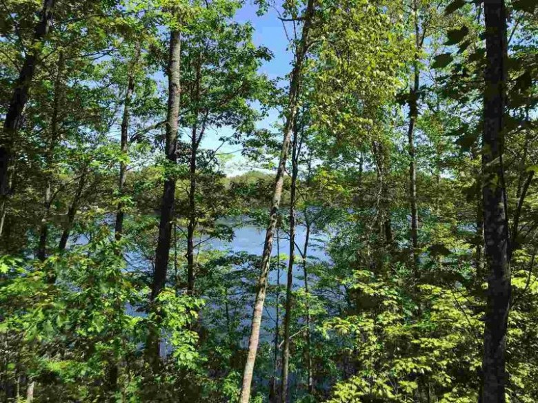 TBD Lake Anna Rd, Florence, WI by Wild Rivers Realty-F $82,900