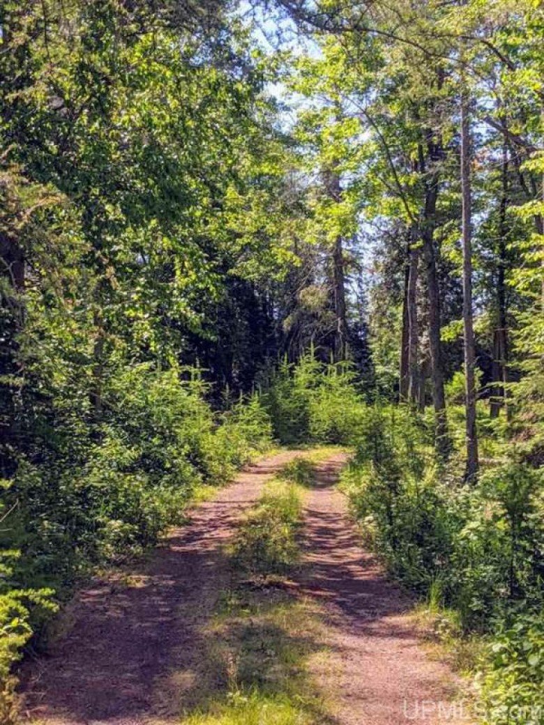 2 ACRE Meadowood Dr Lot 2, Iron River, MI by Re/Max North Country-Ir $45,000