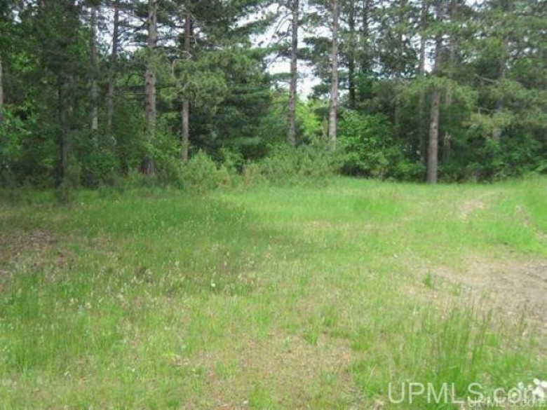 1060 Woodward Ave, Iron Mountain, MI by Great Lakes And Land Real Estate Company $75,000