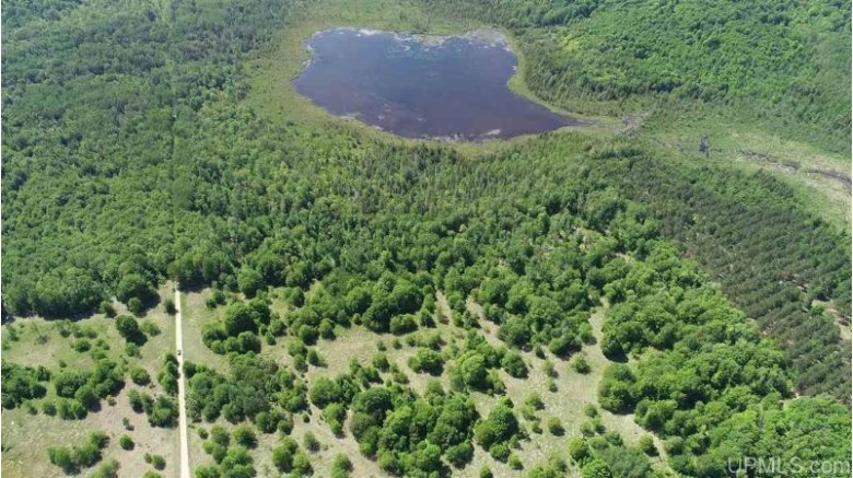 TBD Tee Lake Rd, Germfask, MI by Grover Real Estate $42,500