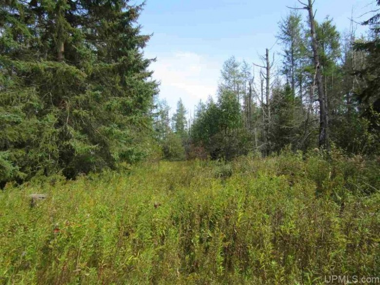 TBD Quarry Rd, Gulliver, MI by Grover Real Estate $79,900
