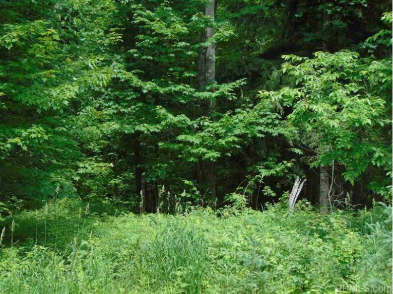 299 Yellow Rd Lots 299,300,334,335 & 336, Nisula, MI by Northern Michigan Land Brokers - H $67,500