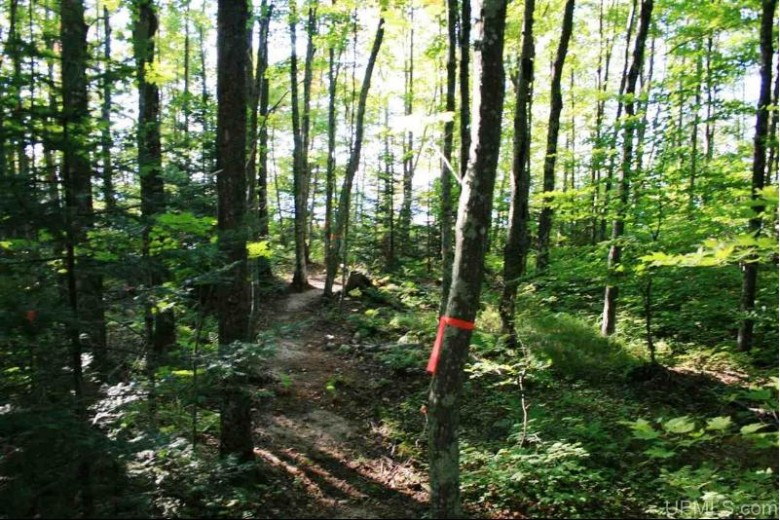 TBD Lakeshore Dr, Ontonagon, MI by First Weber Real Estate $199,950