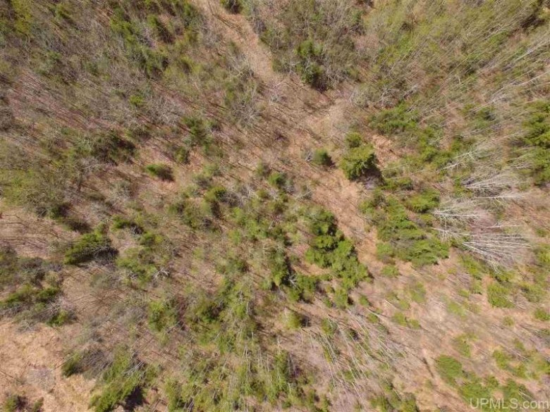 TBD Woodspur Rd, Ontonagon, MI by Up North Realty $199,500