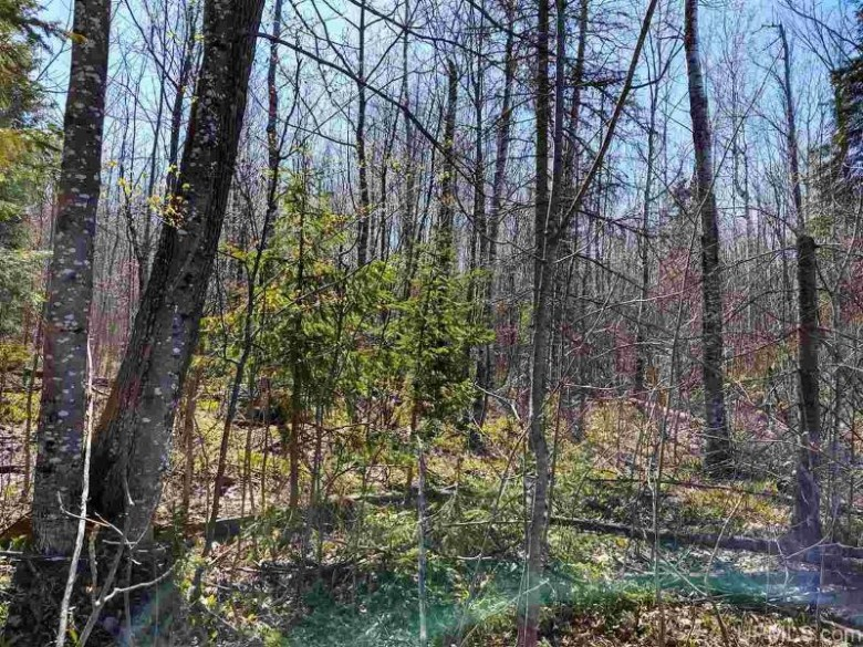 TBD Woodspur Rd, Ontonagon, MI by Up North Realty $33,500