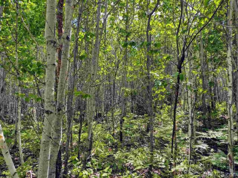 TBD Co Rd Fp, Republic, MI by Up North Realty $56,500