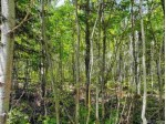 TBD Co Rd Fp, Republic, MI by Up North Realty $34,000