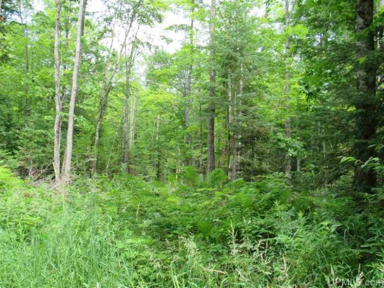 120A Donken-Tapiola Rd, Houghton, MI by Great Lakes And Land Real Estate Company $95,000