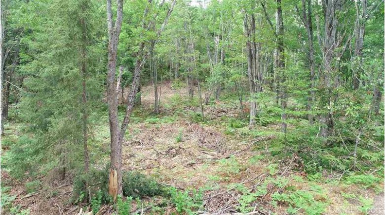 TBD Us Forest Hwy 2440, Wetmore, MI by Grover Real Estate $75,000