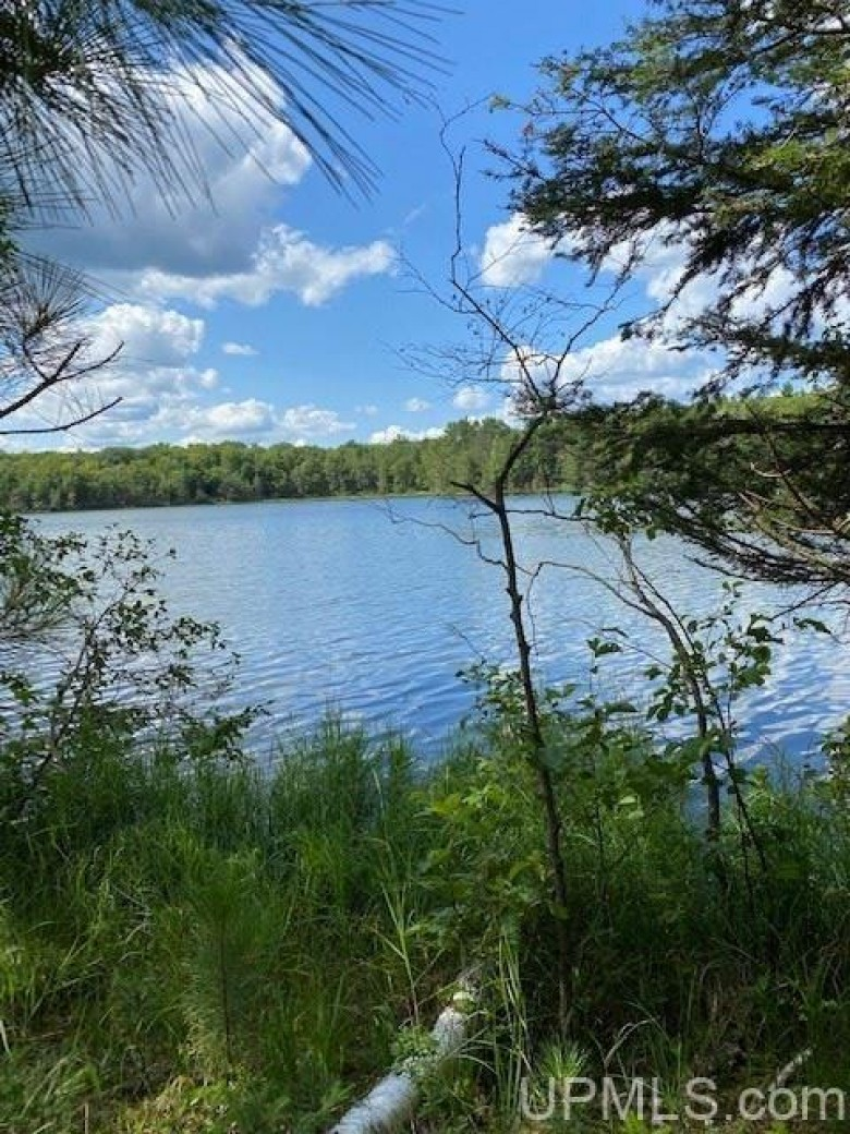 TBD Southshore Dr, Crystal Falls, MI by Wild Rivers Realty-Im $149,900