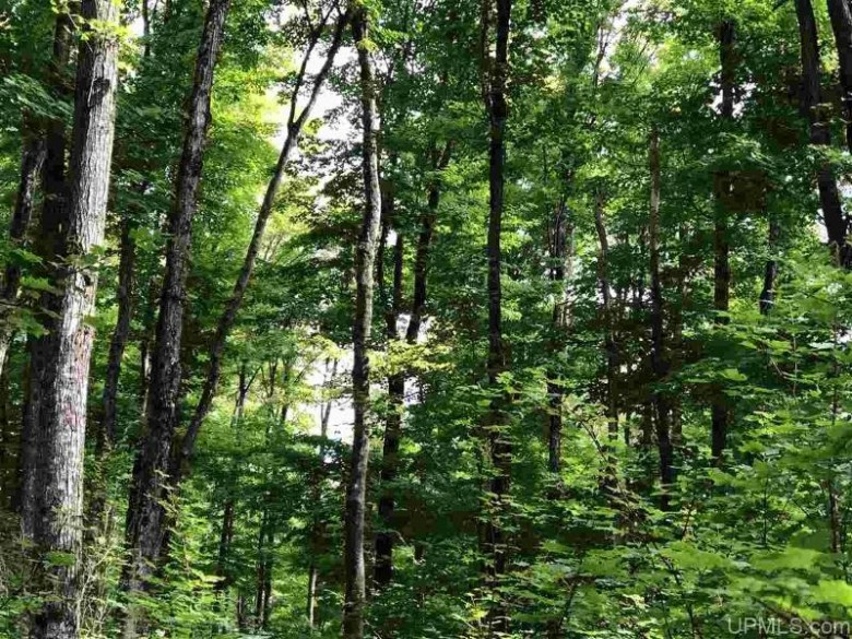 TBD Camp 23 Rd, Germfask, MI by Grover Real Estate $120,000