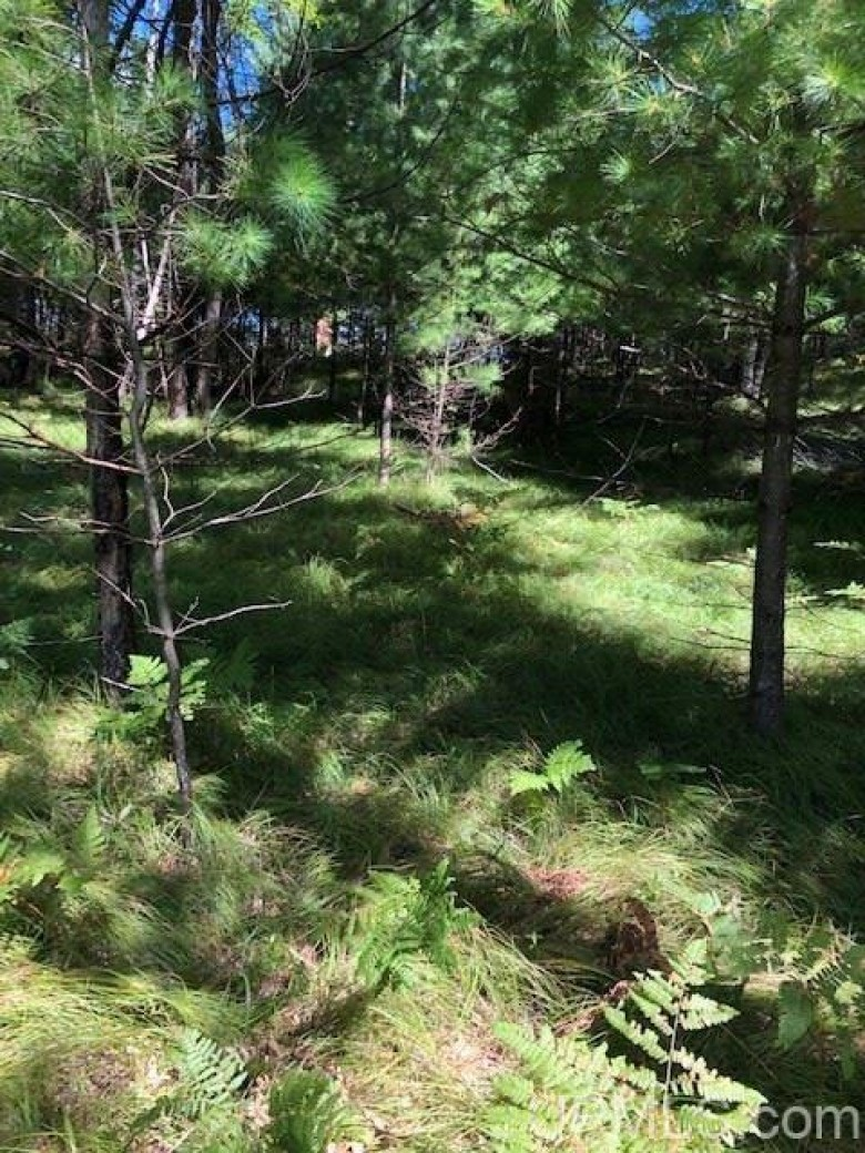TBD Meadow Valley Dr L, Norway, MI by Wild Rivers Realty-Im $18,000