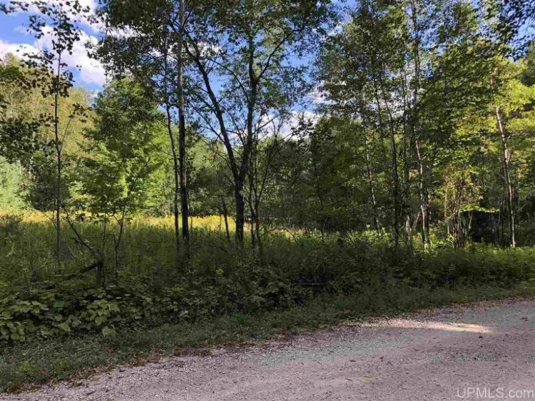 TBD Smith Lake Road, Manistique, MI by Grover Real Estate $39,900