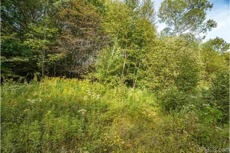 32 AC ON Chaney Lake Rd, Bessemer Township, MI by Coldwell Banker Mulleady $119,000