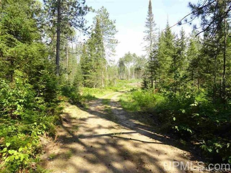 120 ACRES Off Ffg, Republic, MI by Northern Michigan Land Brokers $149,900