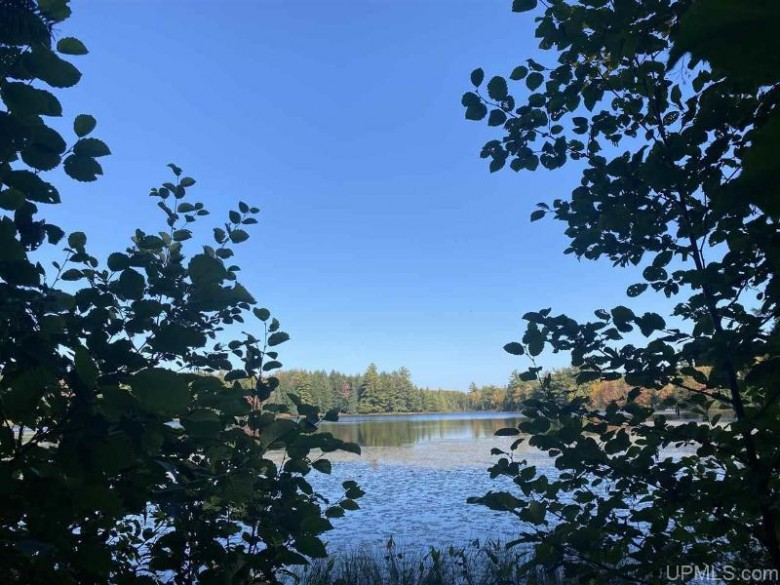 TBD#2 Grace Lake Rd, Watersmeet, MI by First Weber Real Estate $169,900