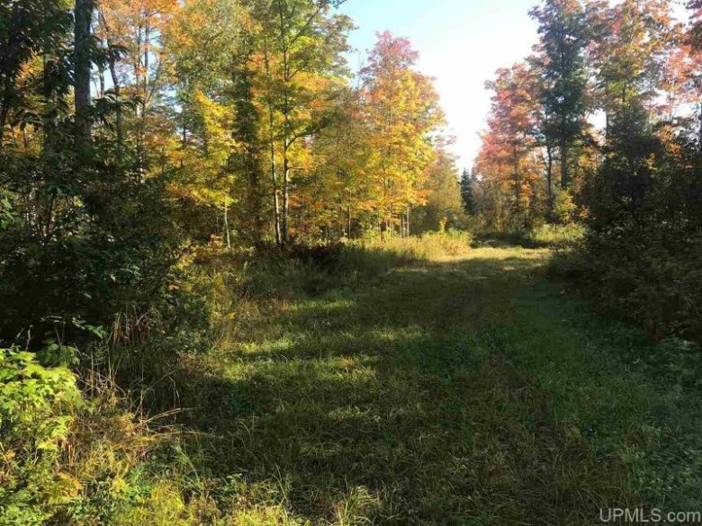 TBD Thompson 41.5 Rd, Rapid River, MI by State Wide Real Estate Of Escanaba $390,000