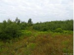 80 ACRES Newberg Rd, Channing, MI by Northern Michigan Land Brokers $80,000