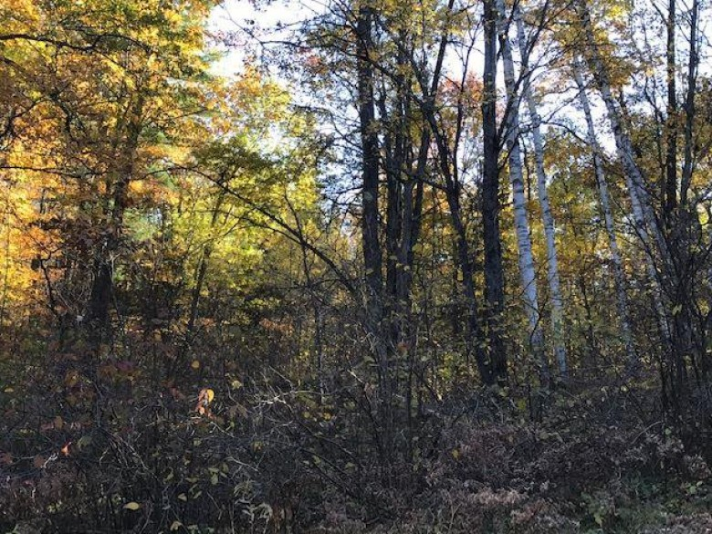 TBD Old Hwy 69 1, Florence, WI by Re/Max North Country-Fl $35,000