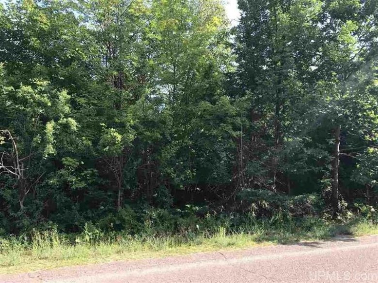702 Seventh St, Houghton, MI by Northern Michigan Land Brokers - H $45,000