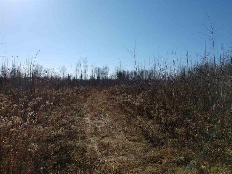 40 ACRES County Road Sm, Cornell, MI by Northern Michigan Land Brokers $40,000