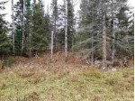 TBD Co Rd 426, Ralph, MI by Stephens Real Estate $87,500