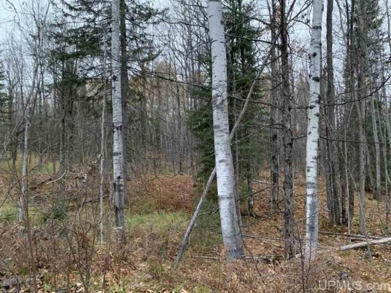 TBD Ford Farm Rd, L'Anse, MI by Up North Realty $36,000