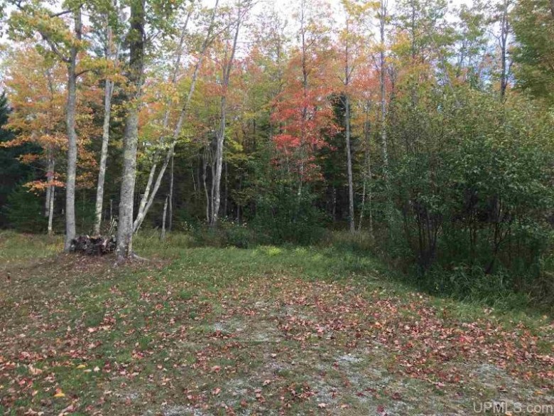 TBD Gauthier Rd, L'Anse, MI by Realty Executives New Image $85,500