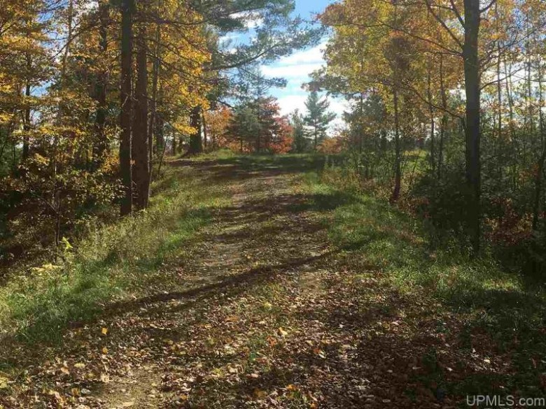 W3335 Lake Louise Dr North LOT#15, Vulcan, MI by Wurzer Real Estate $140,000