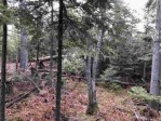 TBD Middle Point Rd - Lot 42, Eagle Harbor, MI by Century 21 North Country Agency $65,000