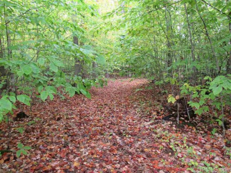 TBD South Sand Lake Rd, Manistique, MI by Grover Real Estate $92,500