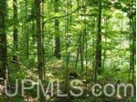 1.2AC Little Bear Rd, Iron River, MI by Re/Max North Country-Ir $10,000