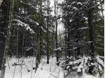 TBD Off Lakeshore Dr, Ontonagon, MI by American Forest Management $44,000