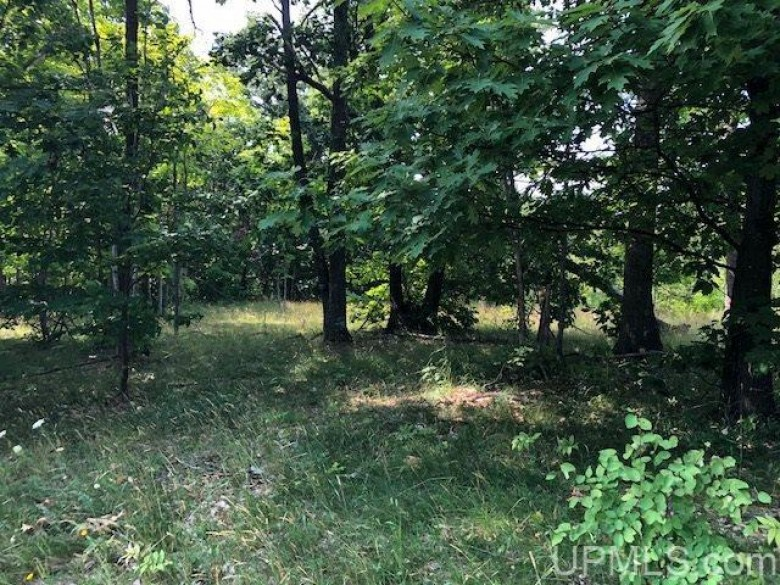 TBD Sharon Ave, Houghton, MI by Century 21 North Country Agency $60,000