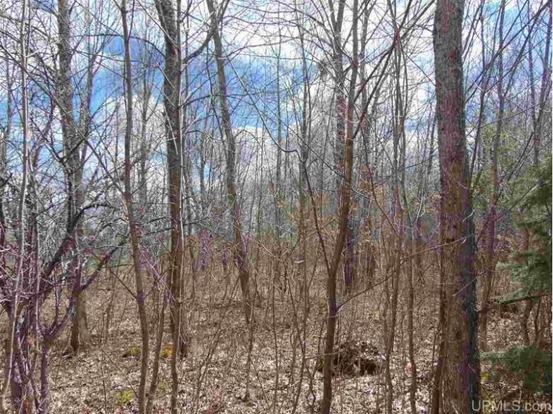 TBD M28, Bruce Crossing, MI by Northern Michigan Land Brokers - H $34,900