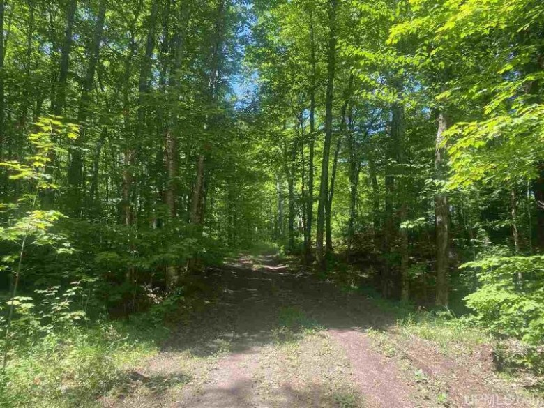 E5692 & 5690 Chaney Lake Rd Bessemer, MI 49911-1111 by First Weber Real Estate $254,000