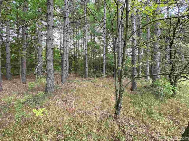 ON Storm Watch Dr 33 & 34 Ironwood, MI 49938 by First Weber Real Estate $16,500