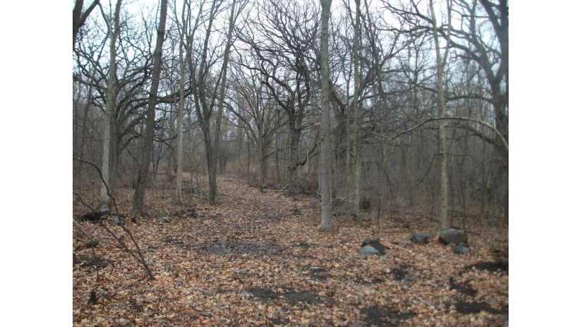 Lt4 County Road N Cold Spring, WI 53190 by First Weber Inc - Johnson Creek $179,000
