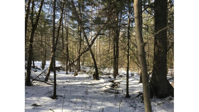Lt3 Wayfaring Ln Abrams, WI 54153 by Re/Max North Winds Realty, Llc $39,900