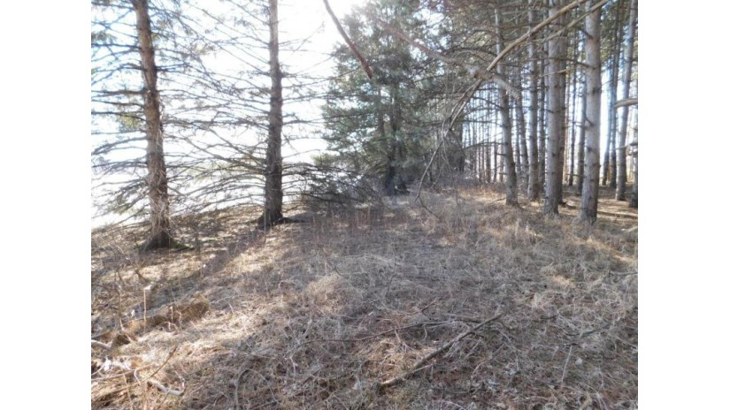 Lot 2 Upper Red Lake Rd Red Springs, WI 54128-9126 by Re/Max North Winds Realty, Llc $49,900