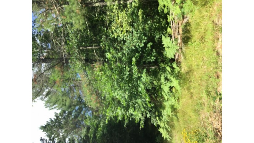 W5688 N THREE RIVERS RD Wausaukee, WI 54177 by Pine Cone Realty Llc $39,000
