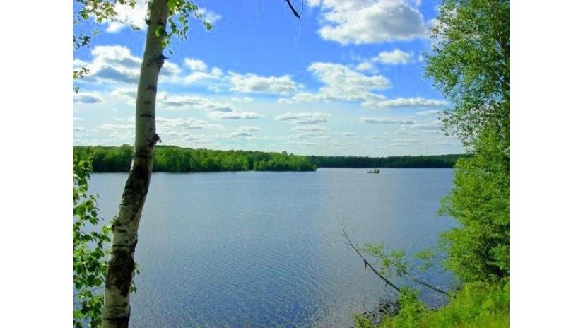 Lt.4 White Pine LN Beecher, WI 54156 by Pine Cone Realty Llc $20,000