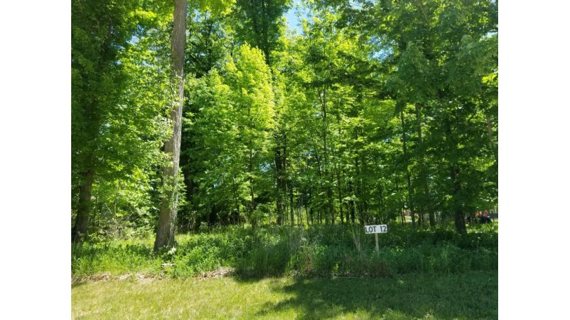 Lt 12 Bl 9 Red Fox LN Manitowoc, WI 54220-1059 by Action Realty $59,800