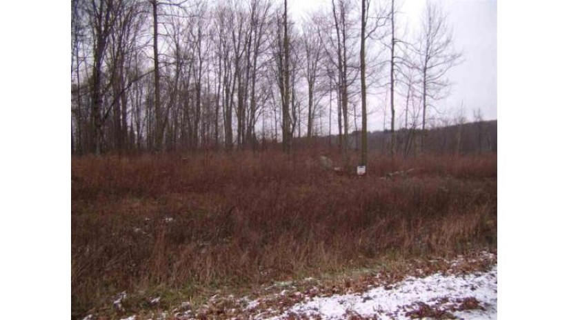 Thorn Apple Drive Wittenberg, WI 54499 by Smart Move Realty $14,900