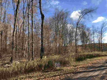 Thornapple Drive, Wittenberg, WI 54499