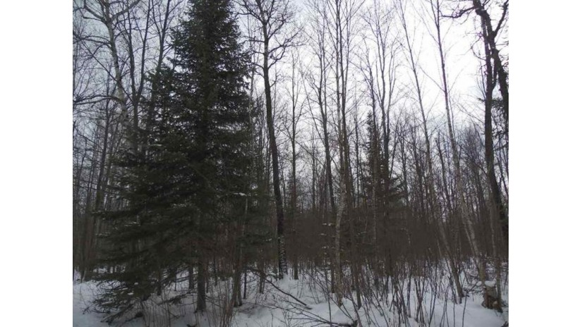 N6248 County Road E Tomahawk, WI 54487 by Century 21 Best Way $94,900