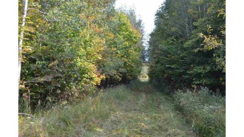 0 Peterson Road Gleason, WI 54435 by United Country Hamele Auction & Realty $369,900